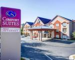 Lawrenceville Georgia Hotels - Comfort Suites Lawrenceville