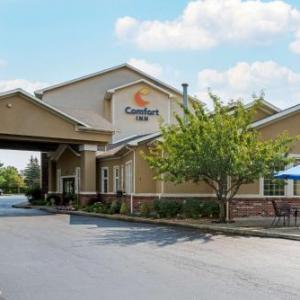 UB Center for the Arts Hotels - Comfort Inn University