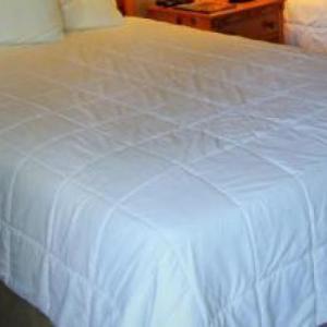 MontBleu Resort Casino and Spa Hotels - Tea Garden Lodge