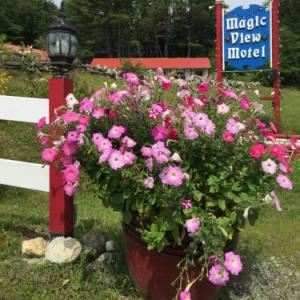 Magic View Motel