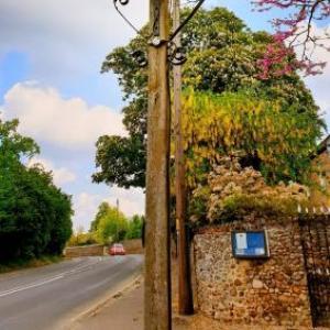 Saffron Walden Town Hall Hotels - The Crown House Inn