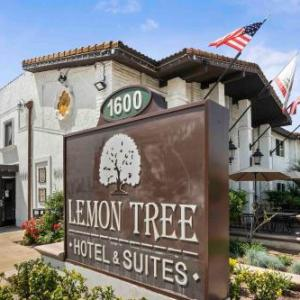 The Lemon Tree Hotel