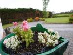 Athlone Ireland Hotels - Dun Cromain B&B