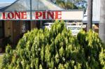 Corowa Australia Hotels - Lone Pine Motel
