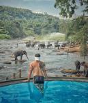 Dambulla Sri Lanka Hotels - Hotel Elephant Bay