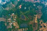 Bharatpur India Hotels - Syna Tiger Resort