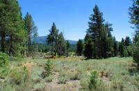 Sawmill Tahoe Retreat