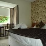 Floral Pavilion Hotels - Albion Guest House