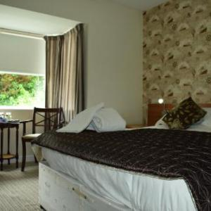 Hotels near Floral Pavilion New Brighton - Albion Guest House