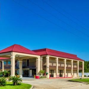 Hotels near Southeastern Louisiana University Center - Lexington Inn Hammond