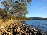 Eaglehawk Neck Australia Hotels - Nrma Port Arthur Holiday Park