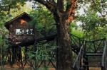 Bharatpur India Hotels - Tree House Hideaway