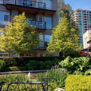 Deluxe Two Bedroom Apartment at UBC Campus BC, 0