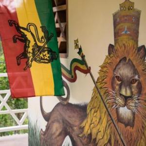 Cheap Ocho Rios Hotels Book The Cheapest Hotel In Ocho Rios Jamaica