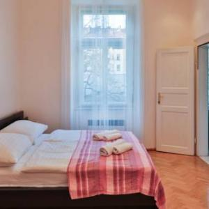 Central Apartment Wenzigova 13