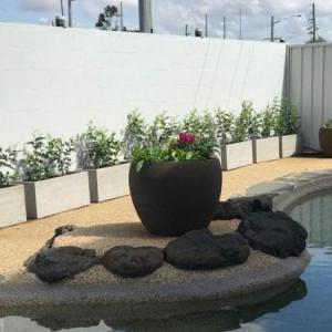 Hotels near Bundaberg Recreational Precinct - Takalvan Motel