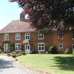 Hotels near Astor Theatre Deal - Molland Manor House Bed & Breakfast