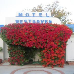 Santa Monica College Hotels - Rest Haven Motel