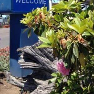 Seabird Lodge A Signature Inn