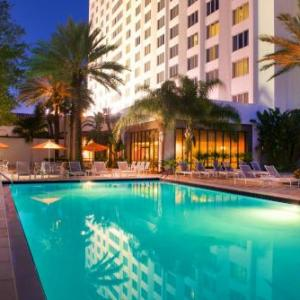 Mahaffey Theater Hotels - Hilton St. Petersburg Bayfront