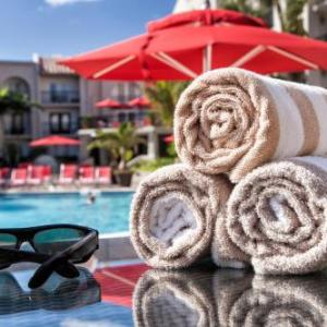 Hotels near Florida Atlantic University - Wyndham Boca Raton