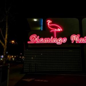 Hotels near Sobrato Center for Employment Training - The Flamingo Motel