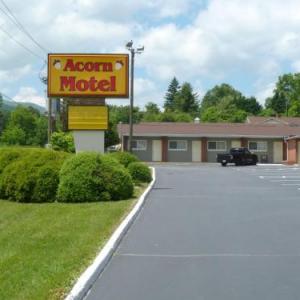 Acorn Motel -Black Mountain