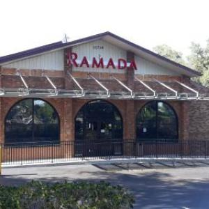 Florida Strawberry Festival Hotels - Ramada by Wyndham Temple Terrace/Tampa North