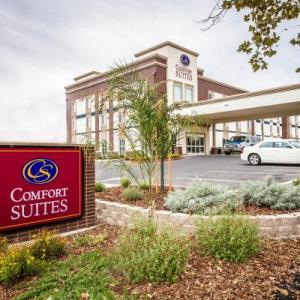 Hotels near Cache Creek Casino Resort - Comfort Suites Woodland - Sacramento Airport
