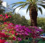 North Palm Beach Florida Hotels - Palm Beach Gardens Marriott