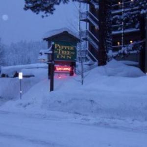 Pepper Tree Inn Tahoe City