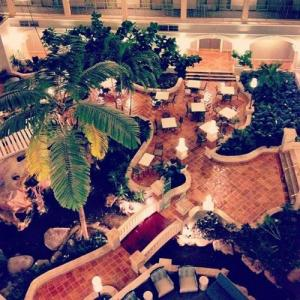 OMNI Auditorium Hotels - Sheraton Suites Fort Lauderdale At Cypress Creek