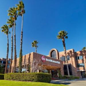 Bowers Museum Hotels - Best Western Plus Meridian Inn & Suites Anaheim-Orange