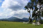 Dambulla Sri Lanka Hotels - Ancoombra Tea Estate Bungalow