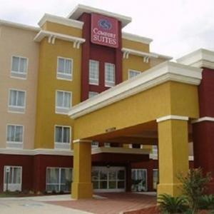 Hotels near Lamar Dixon Expo Center - Comfort Suites Gonzales