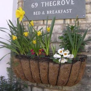 69thegrove