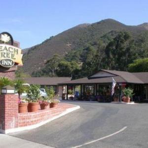 Peach Tree Inn