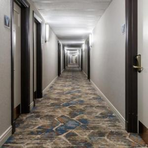 Sullivan Athletic Center Hotels - Hotel Versey