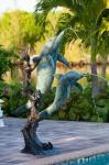 Grand Bahama Island Bahamas Hotels - Dolphin Cove