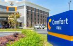 Tarboro North Carolina Hotels - Comfort Inn Rocky Mount