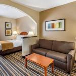 Comfort Suites Chesapeake -Norfolk