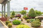 Newport Tennessee Hotels - Econo Lodge White Pine