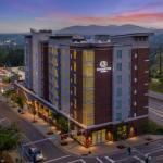 Hyatt Place Asheville Downtown