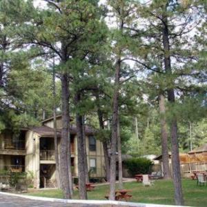Village Lodge