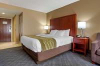 Comfort Inn Baton Rouge Image