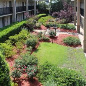 Hotels near Rockingham Dragway - Best Western Pinehurst Inn