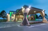 Quality Inn & Suites Redwood Coast Image