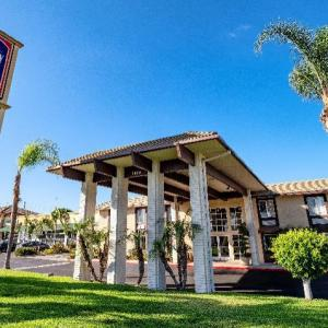 Hotels near CSU Dominguez Hills - Willow Tree Inn Los Angeles- near Stub Hub Center