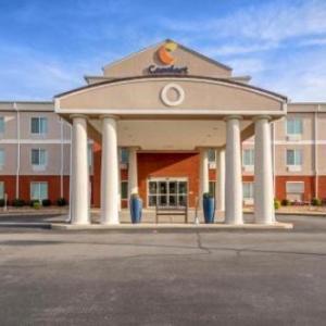 Hotels near Tiger Stadium Livingston - Comfort Inn Demopolis