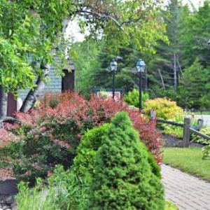 Whiteface Mountain Hotels - Hungry Trout Resort